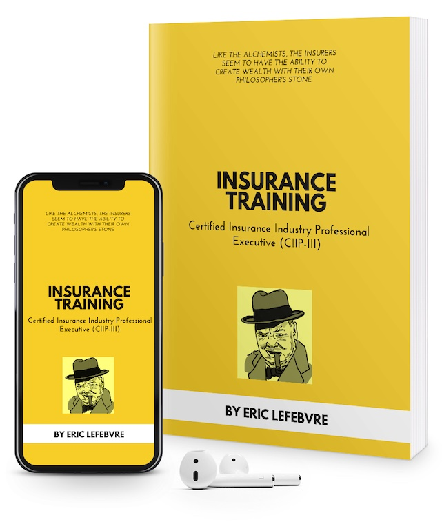 SkillFront Certified Insurance Industry Professional Executive™ (CIIP-III™) Certification E-Book and Audiobook